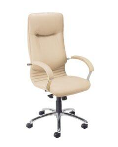 Fotel gabinetowy nova steel